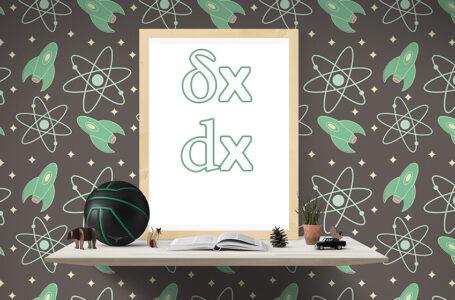 لماذا نستعمل في الفيزياء أحيانا الرمز dx وأحيانا أخرى نستعمل δx ، ما الفرق إذن بين التعبيرين ؟